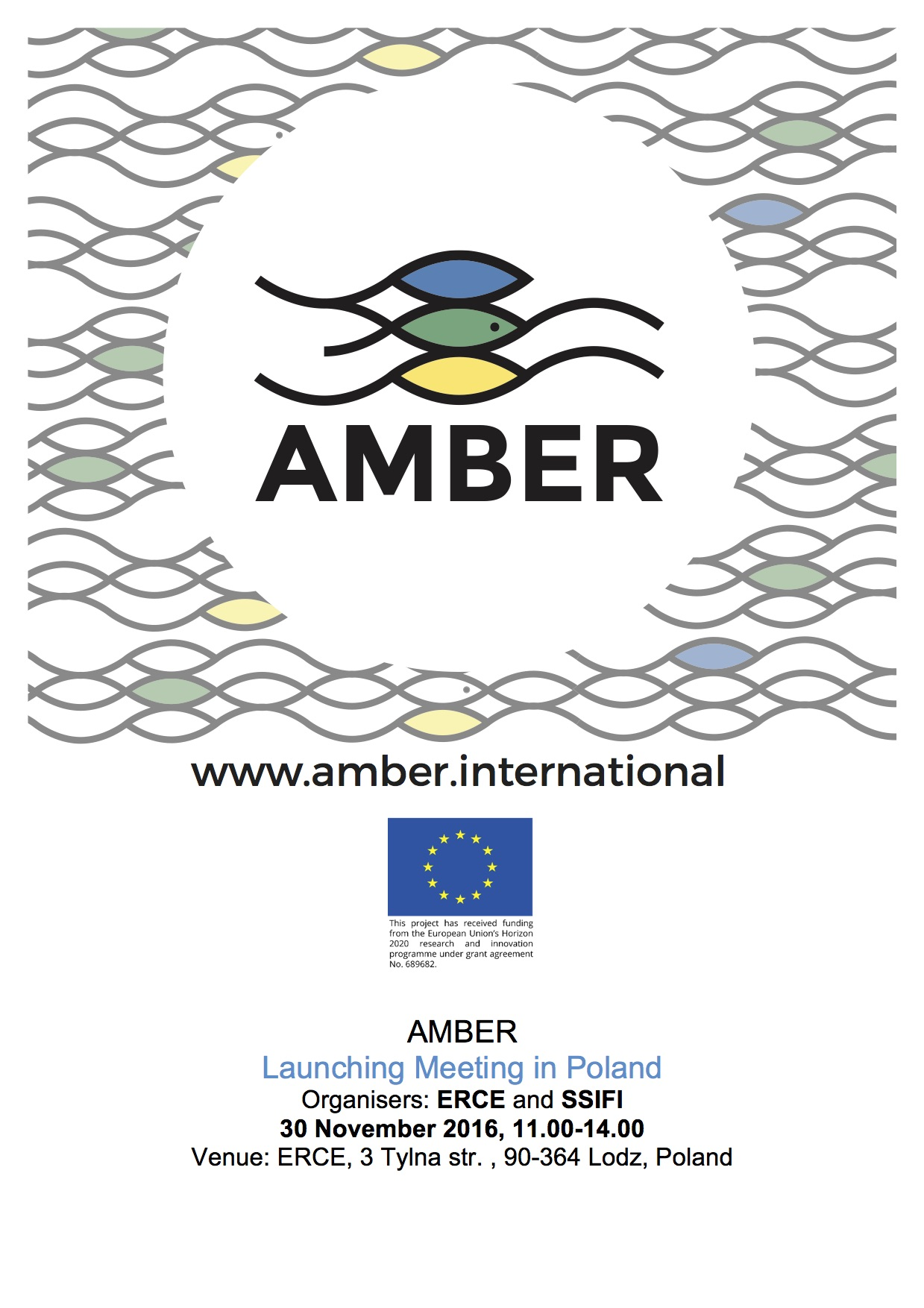 AMBER_Launching Meeting in Poland_on web