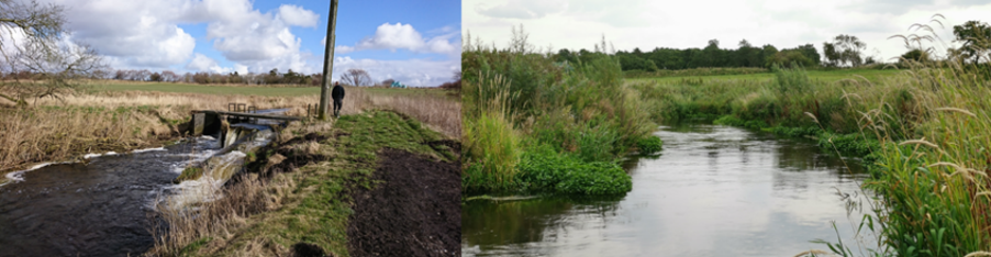 Gelstrup Dambrug before and after removal