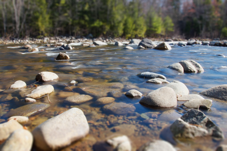 nature-river-rocks-7138