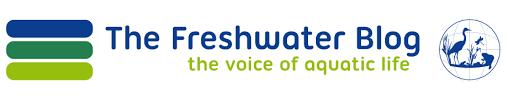 freshwater blog